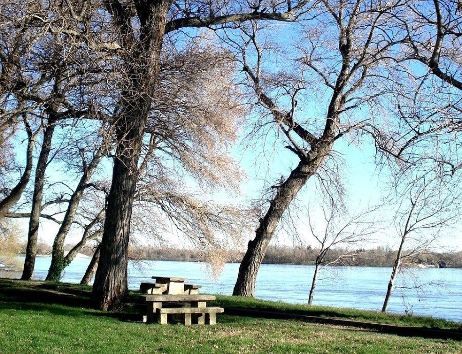 Seating under the trees by the banks of the Rhone river